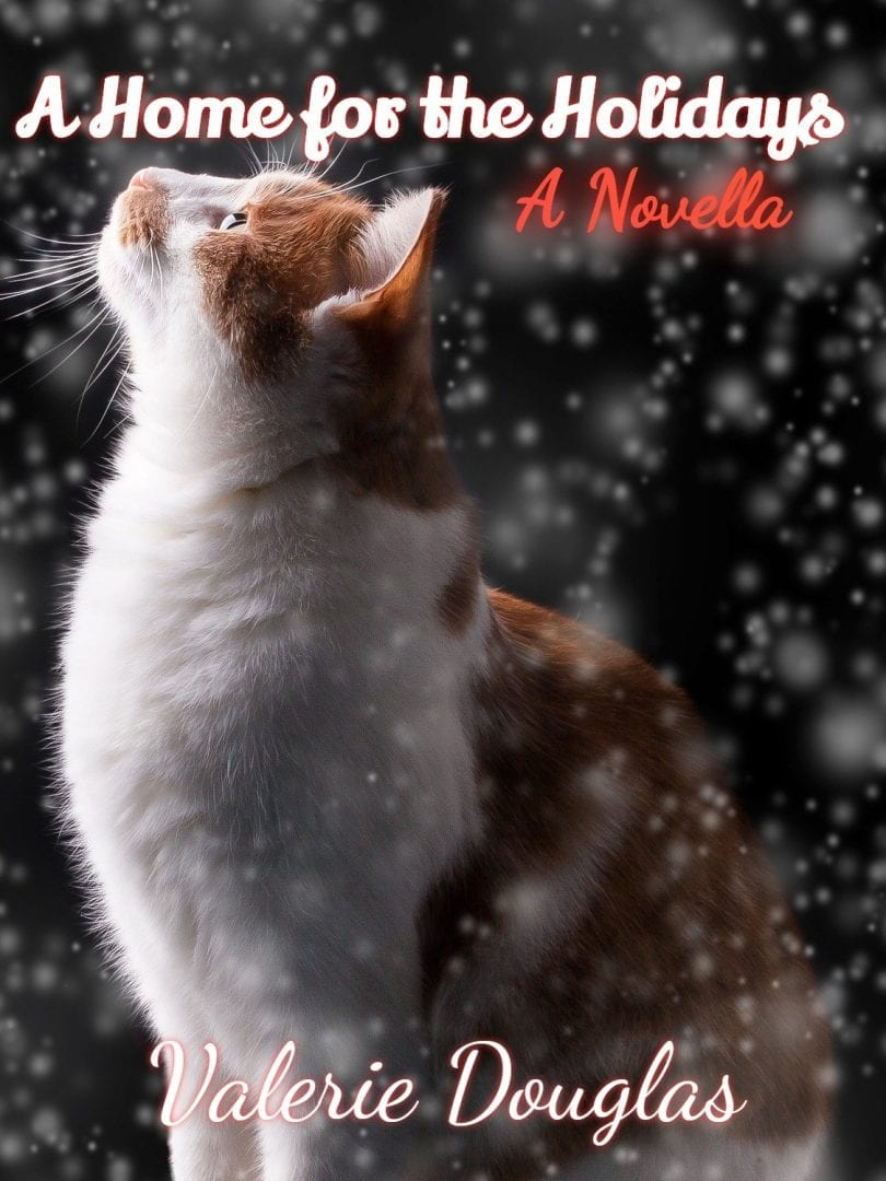 Book Cover: A Home for the Holidays